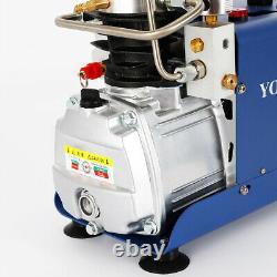 4500psi Pompe De Compresseur D'air D'arrêt Électrique Pcp Haute Pression 0-30mpa 300bar